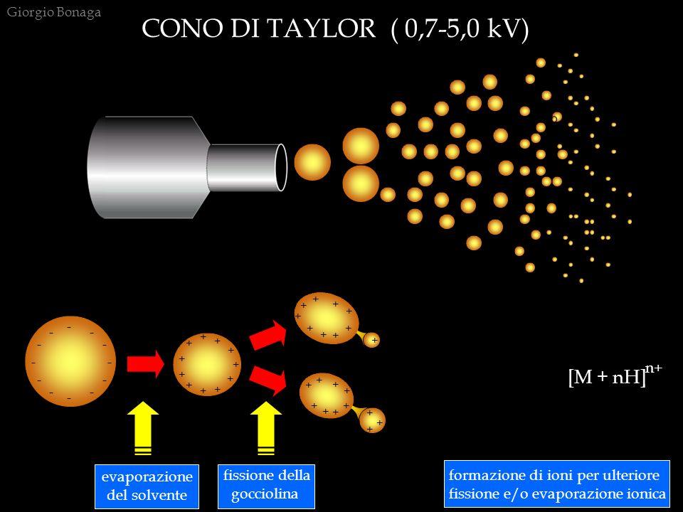 CONO DI TAYLOR ( 0,7-5,0 kV) [M + nH] n+ evaporazione del solvente